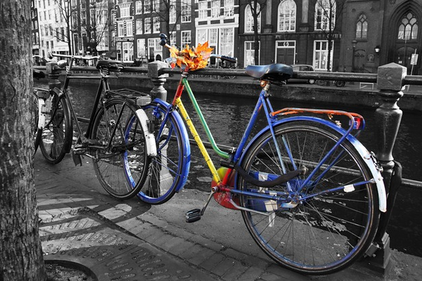 Exciting Bike Routes In Amsterdam