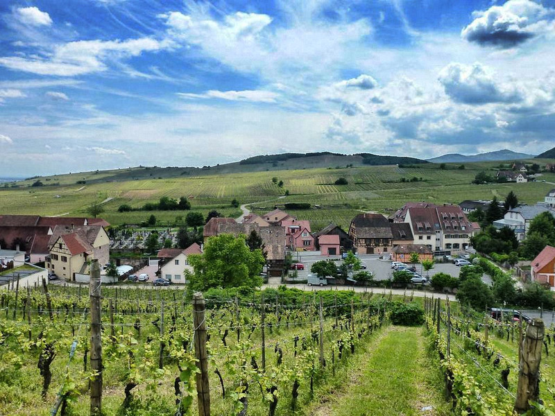The Alsace Wine Route - Photo Essay