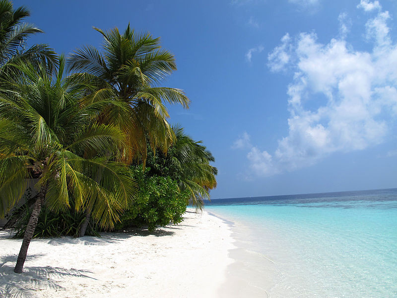 Maldive Beaches