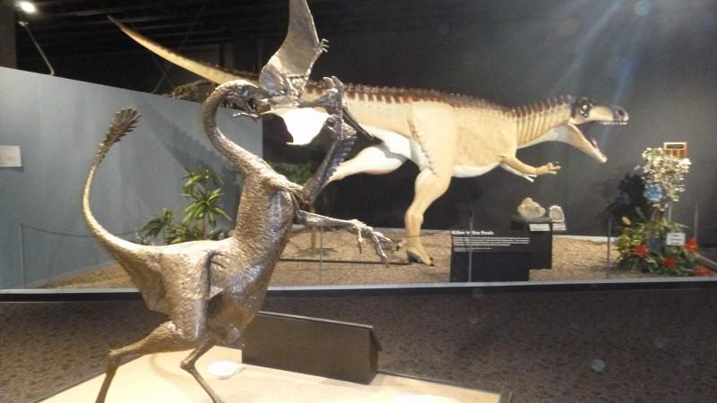 Tucumcari, New Mexico - Dinosaur Museum