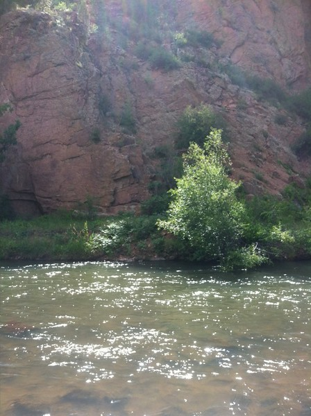 South Platte River Conifer Colorado