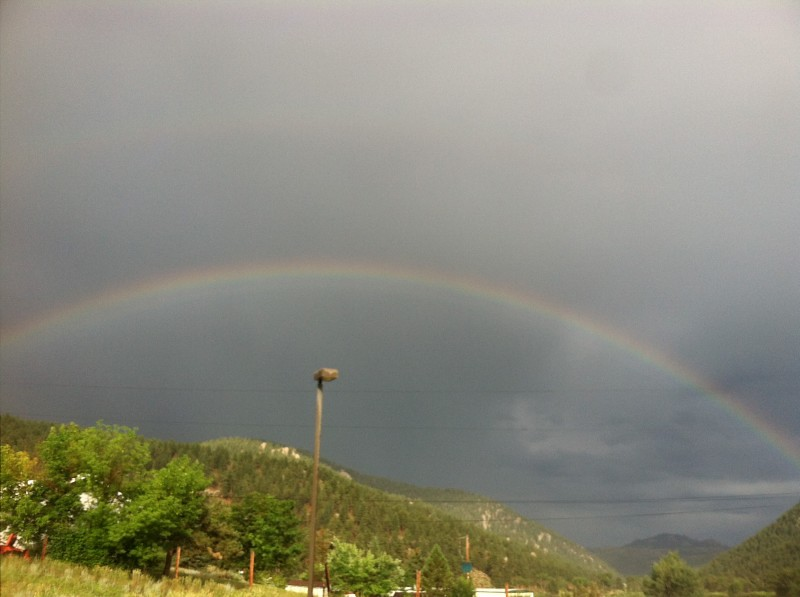 Pine Colorado Rainbow