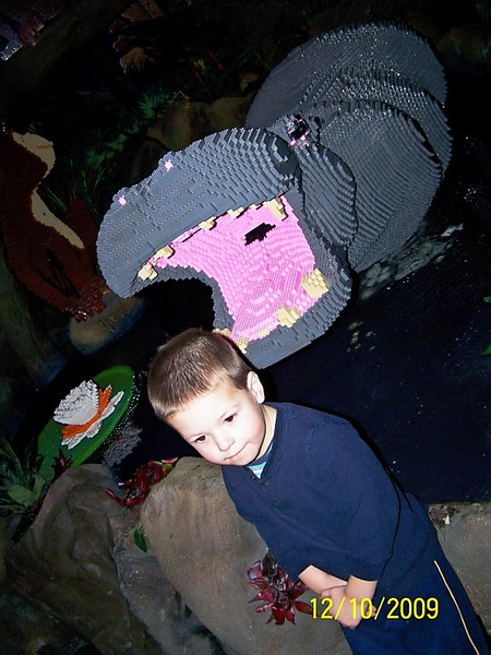 Legoland Discovery Center Hippo