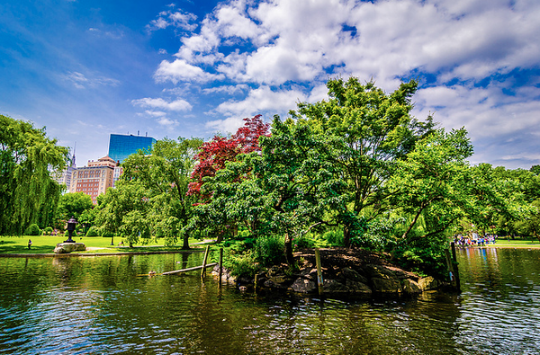 What To Do In Boston City Guide
